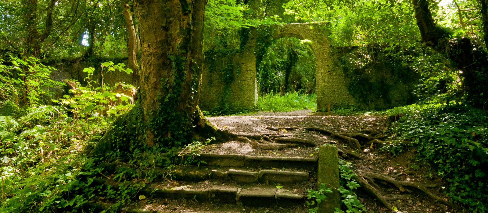 Castle gate & Gardens, accommodation by Discover Ireland Tours Destination Management Company