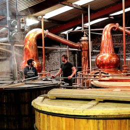 Enjoy a trip to the Dingle Distillery in County Kerry organised by your Irish DMC specialist