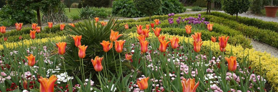 Flower Garden in Muckross House in County Kerry Ireland